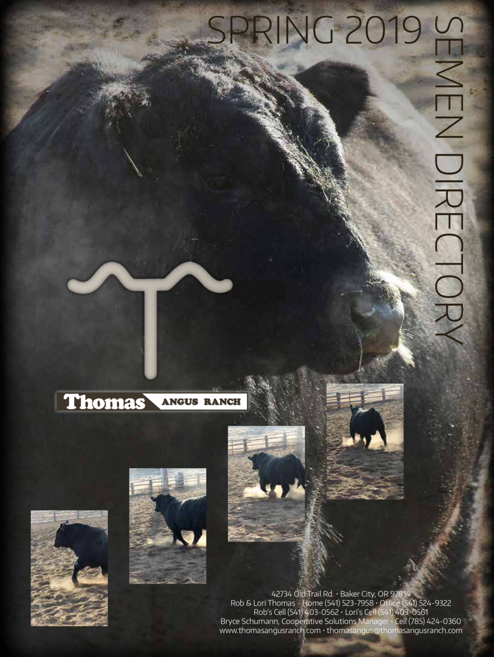 SEMEN DIRECTORY  SPRING 2019  42734 Old Trail Rd.     Baker City, OR 97814 Rob   Lori Thomas - Home  541  523-7958     Off...