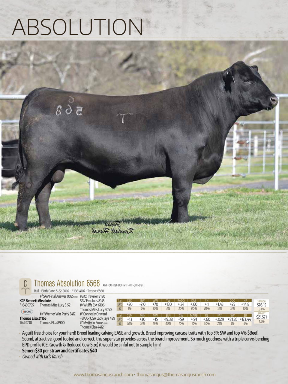 ABSOLUTION  C Thomas Absolution 6568    AMF-CAF-D2F-DDF-M1F-NHF-OHF-OSF    Bull     Birth Date  5-22-2016      18614107   ...